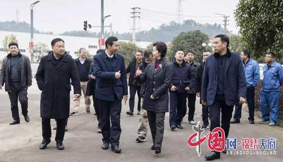四川省市场监管局副局长苟小兰一
