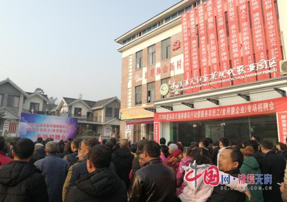 蓬溪县天福镇举行2020年食用菌企业场招聘会,300余个岗位等你来挑