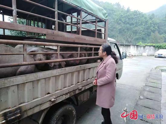 芦山县:强服务促生产 保障群众