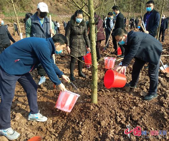 蓬溪县文井镇:疫情散去,我们和春天去约会