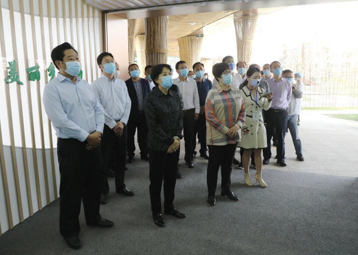 祝春秀来宜调研精制川茶产业发展