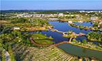 涪城区被命名为四川乡村振兴先进县(市、区)