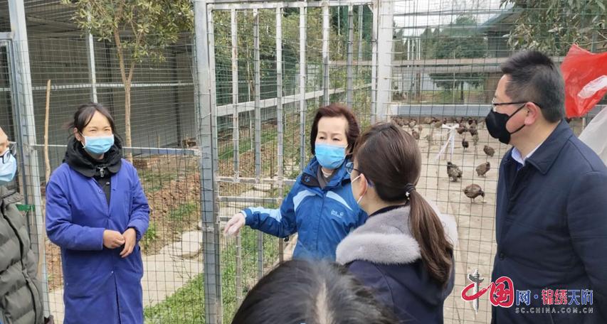 阆中市着力生态保护 抓好野生动物管理专项整治见成效