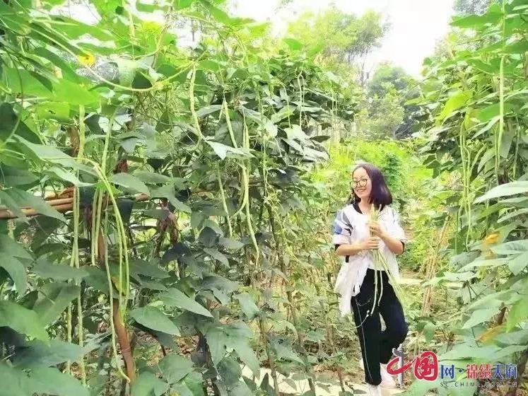 http://www.ncchanghong.com/nanchongjingji/24128.html