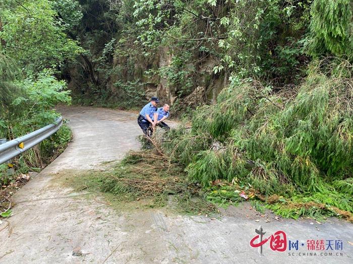 射洪市:狂风吹倒路边树,民警清障保安全