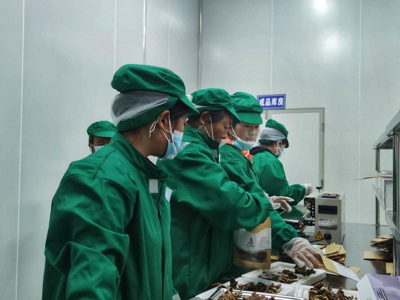 脱贫攻坚看阿坝|马尔康哈飘村:特色农产品深加工产业造血助增收