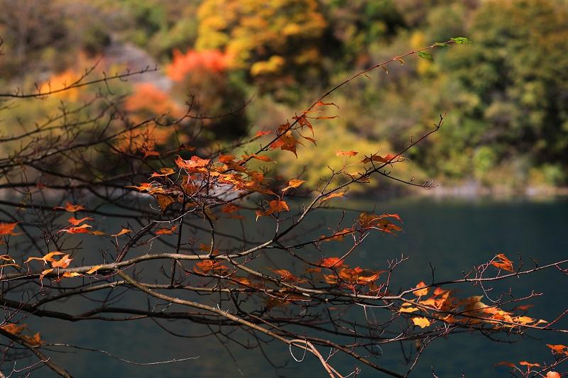红叶季,松坪沟绝美秋色让人陶醉!