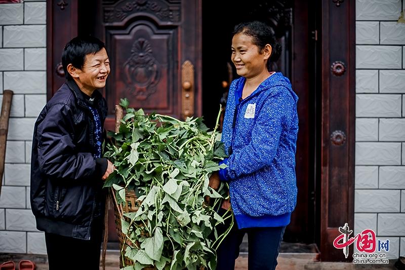 自贡沿滩:靠自己的双手致富 脱贫奔小康