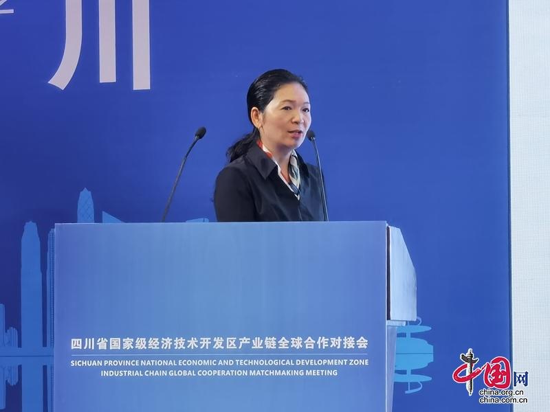 """遂宁经开区在上海向世界500强和中外知名企业推荐""""三大""""产业链"""