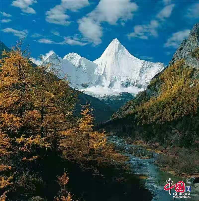 做旅游攻略的目的:雁南飞茶田景区:本期排名第一满意度高达9082%。