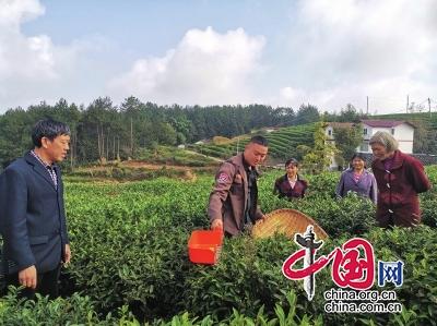 四川旺苍举行茶叶生产机械技术培训