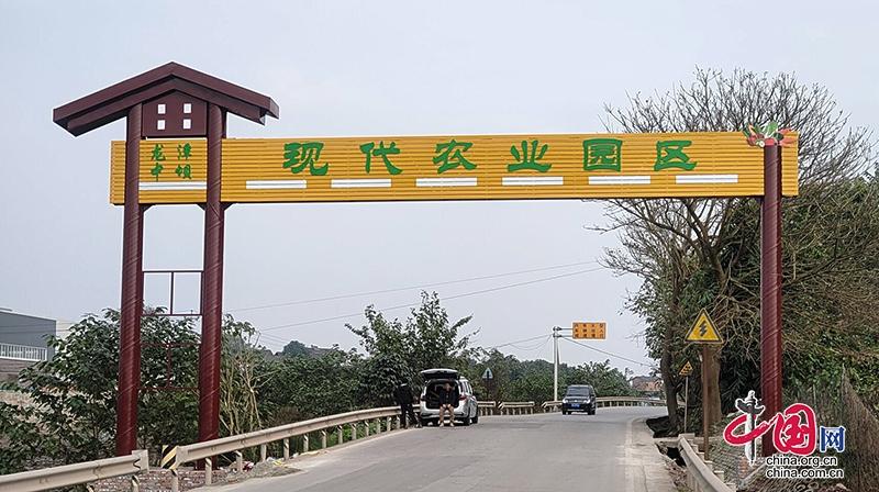自贡贡井:全市仅四个 龙潭镇荣获实施乡村振兴战略工作先进乡镇称号