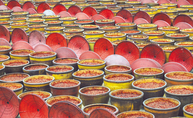 融合發展新格局:豆瓣醬登上大舞臺