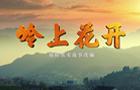广元朝天区脱贫攻坚微电影《岭上花开》感动发布