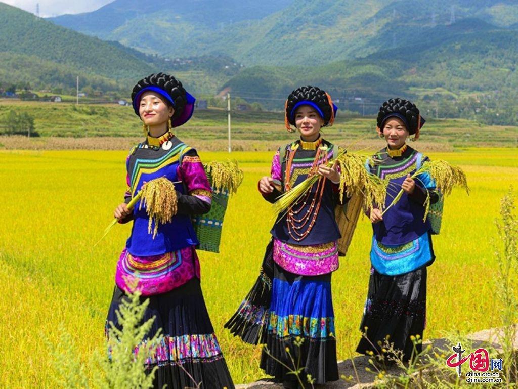 越西县打造农文旅 为乡村振兴增色添彩