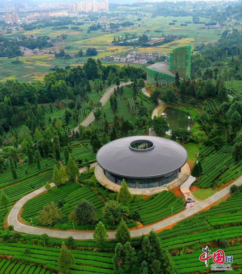 四川洪雅:项目建设促发展 茶旅融合好风光